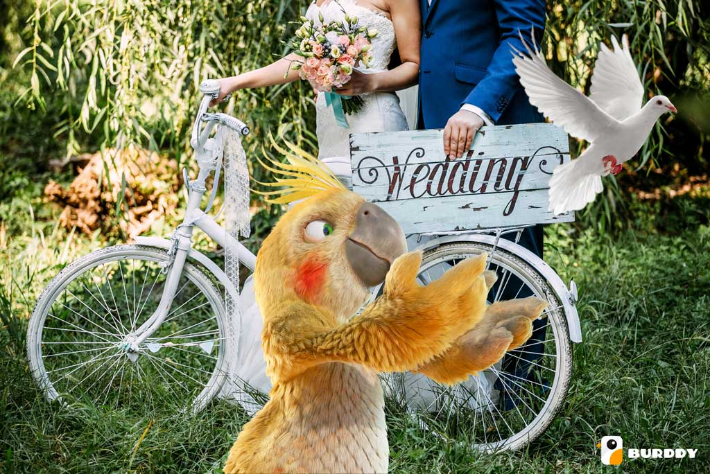 Comment aménager un coin photo de mariage original avec BURDDY ?